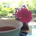 京都・長岡京にある甘味点心処「小倉山荘カフェ」でランチ